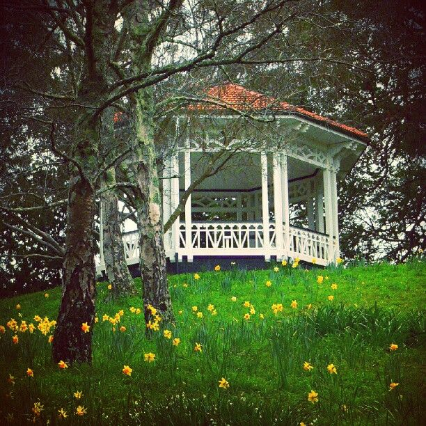 Photo from the Instacanvas gallery for billiebop. Virginia Lake bandstand, Whanganui