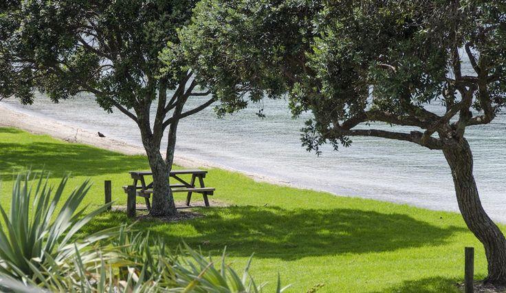Perfect picnic spot - Matakatia Bay on the Whangaparaoa Peninsula, Auckland