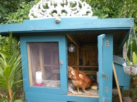 72 Best Images About Chickens And Chicken Coops On Pinterest