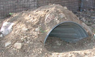 Trash Can Tortoise Burrow - a Bucket Burrow upgrade for growing tortoises! PetDIYs.com