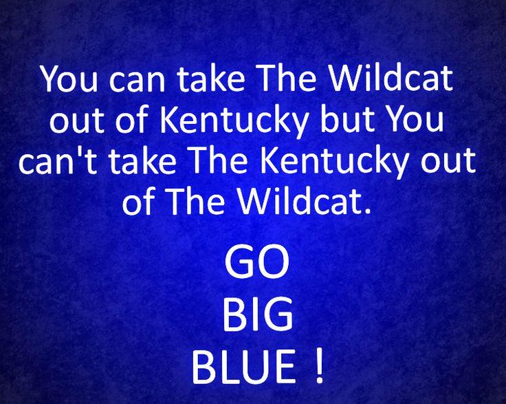 25 Best Ideas About Kentucky Basketball On Pinterest: Best 25+ Go Big Blue Ideas On Pinterest