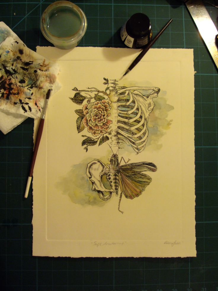 rib cage- there is a black ink tattoo of this in skin art, it's so pretty in color