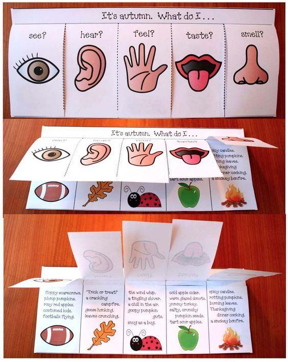 5 senses activities, 5 senses crafts, 5 senses writing prompts, 5 senses booklet, adjective activities, 4 seasons activities, 4 seasons crafts, 4 seasons booklet, 4 seasons writing prompts