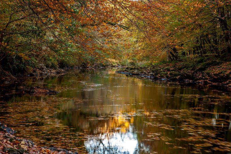 The River Dart Dartmoor