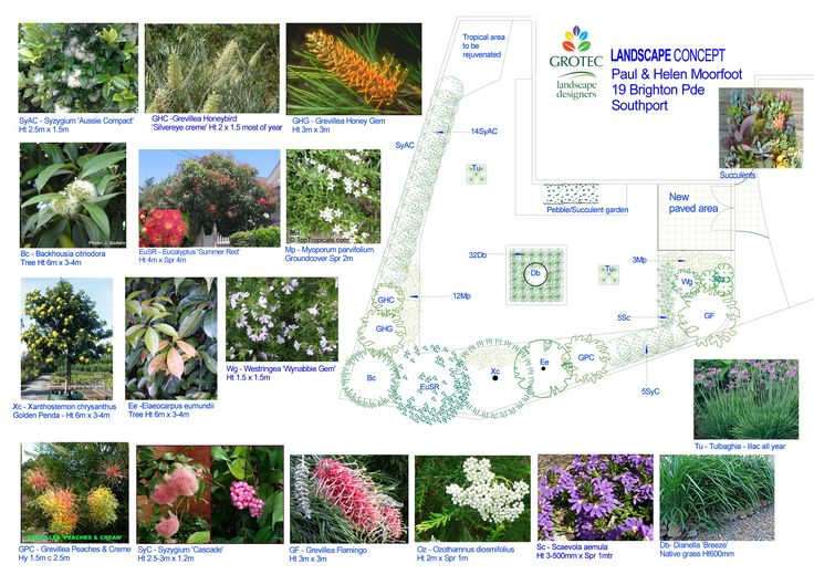 1000 ideas about landscape design software on pinterest