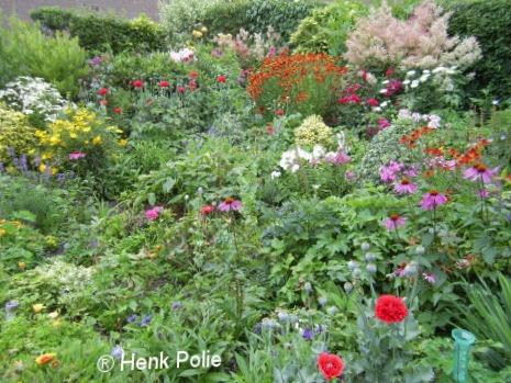 Midden gedeelte van mijn tuin.