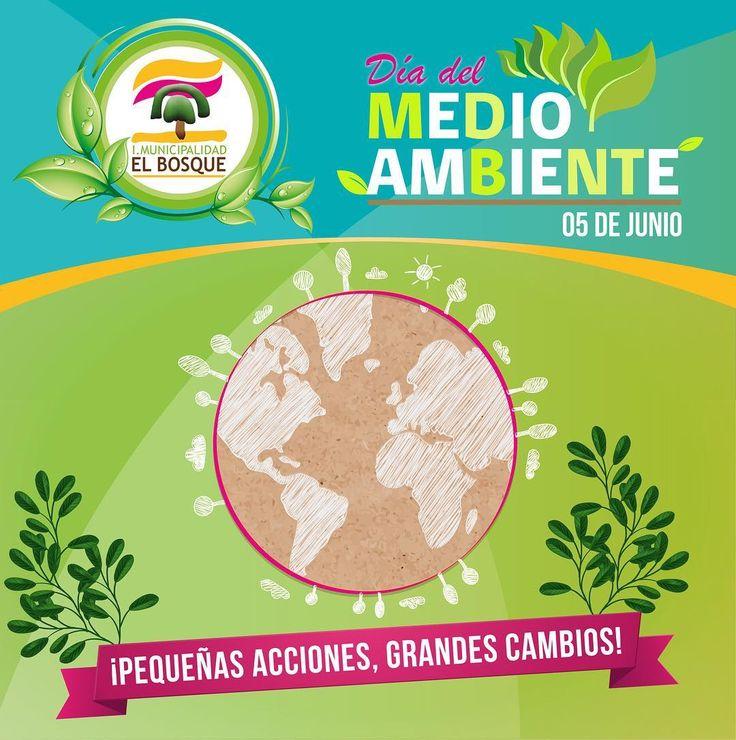 Desde 1973 cada 5 de junio se celebra el #DiaMundialdelMedioAmbiente para sensibilizar a la población mundial en temas ambientales.