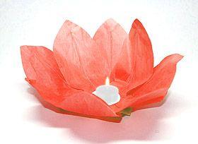 Lanterne flottante lotus Thai rouge. Magiques, ces fleurs lampions en papier qui flottent sur l'eau ou se posent sur vos tables ou buffets. En Asie, et plus particulièrement en Thaïlande, les invités sont conviés à déposer ces lanternes sur l'eau et formulent en même temps un voeu de bonheur. On les appelle ainsi les Lanternes du Bonheur !