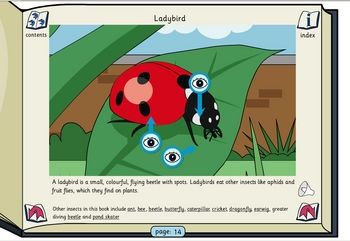 Minibeasts, Amphibians and Reptiles - Listen and Read Information Book. A nature themed classroom activity using an interactive whiteboard. Helps with pupils reading and listening skills. Colourful and engaging. From TES iboard. Ages 4-7.