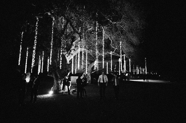 beautiful lights