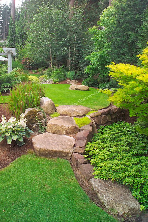 Even the large stone stairs seem to spill from an upper lawn to a lower one, as water would spill between ponds, in this scene from the upper, walking garden in this otherwise small suburban backyard east of Seattle.  Imagine the boulders as pondside platforms and the Japanese Bloodgrass as cattails in this Zen-like interpretation of a traditional Japanese rock garden. Design by Sander Groves landscapes, Inc.