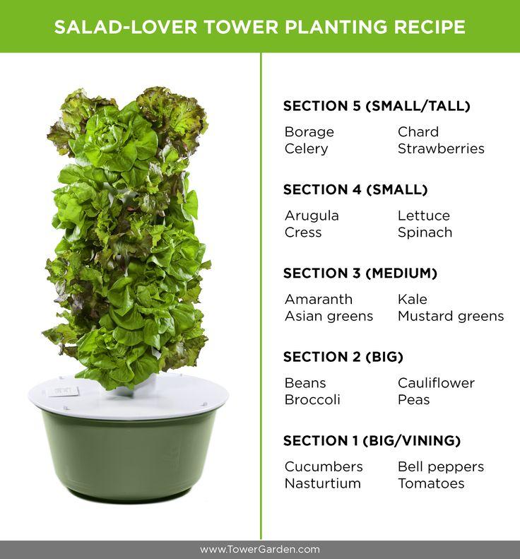 How to Grow Your Own Sensational Salads with no dirt #gardentower #juiceplus+ Sonianajera.towergarden.com