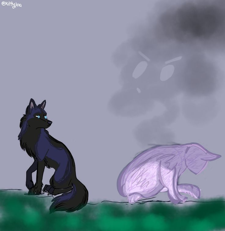 Aphmau and ein- artwork by Kittylinathecatlover. Go check her out for more artworks