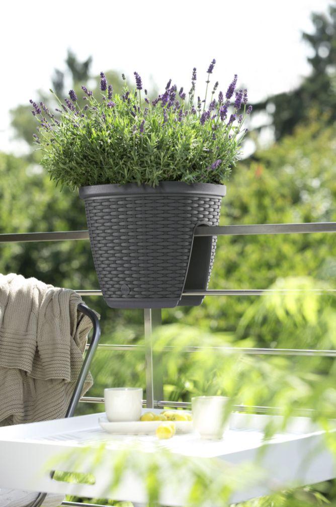 17 Best Images About Garten Gestalten On Pinterest | Deko, Pink ... Balkon Im Fruhling Blumen