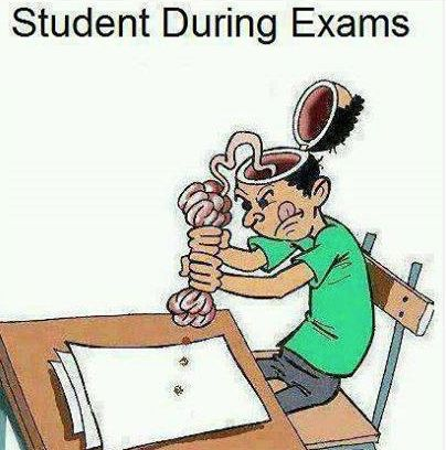 This is so me during final exams! I hate those so much | SOO TRUEE ...