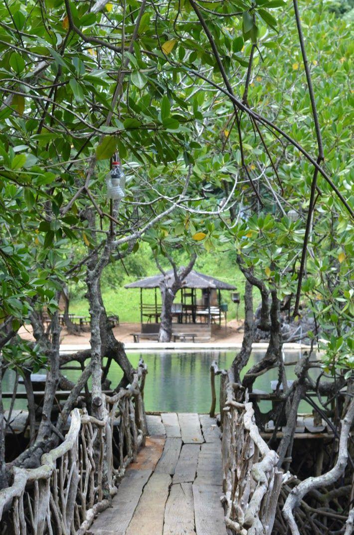 Maquinit Hot Springs - Coron, Palawan