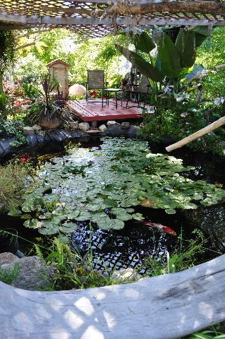 Beautiful seating areas and decks on pinterest for Beautiful koi ponds