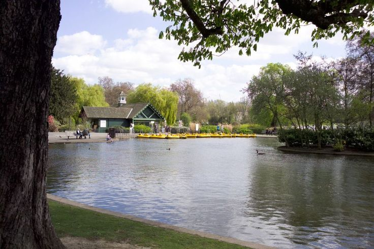 Boat and Pedalo Hire - Regent's Park
