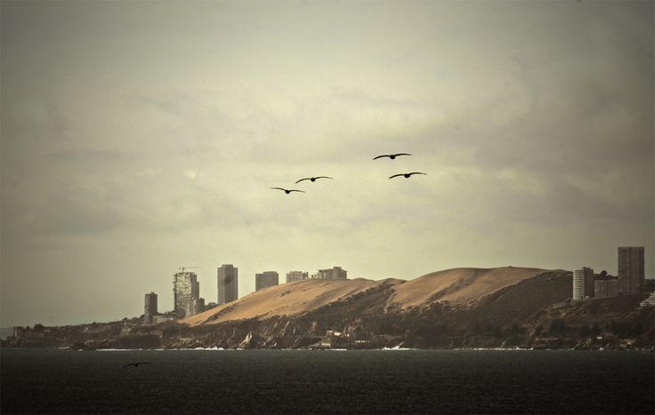 Dunas de Concón, Chile.