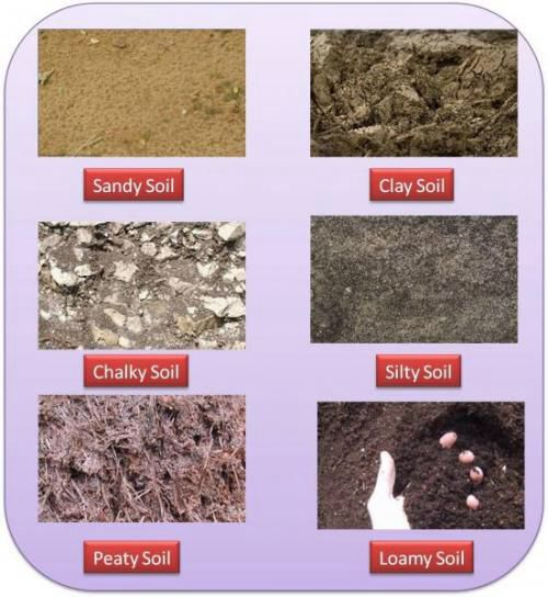 Soil types. Best for growing is loamy. Best ph around 6 to 7. Below 7 acidic and above 7 alkaline. Most plants prefer slightly acidic. How to Fix Soil pH Problems: If soil is too acid, you can add ground limestone to make it more alkaline. If your soil is too alkaline, you can amend it by adding sulphur, shredded leaves or peat moss.