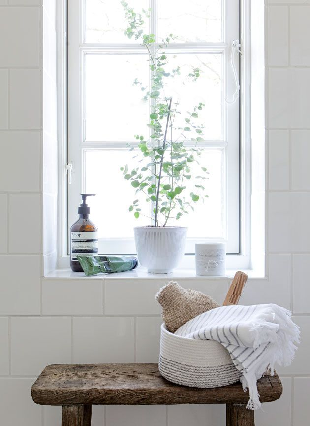 White tile wall + windowsill plant | classic, simple bathroom