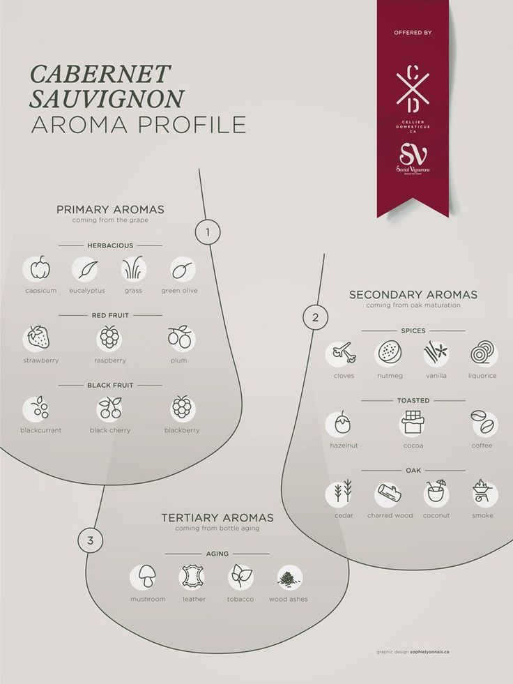 Cabernet Sauvignon grape variety wine aroma profile flavors fruit spices Social Vignerons #Wine #Winetasting #Wineeducation