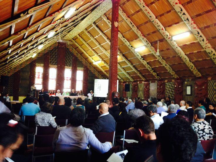 Ngati Whakaue Iho Ake Taumata Elections, Tamatekapua