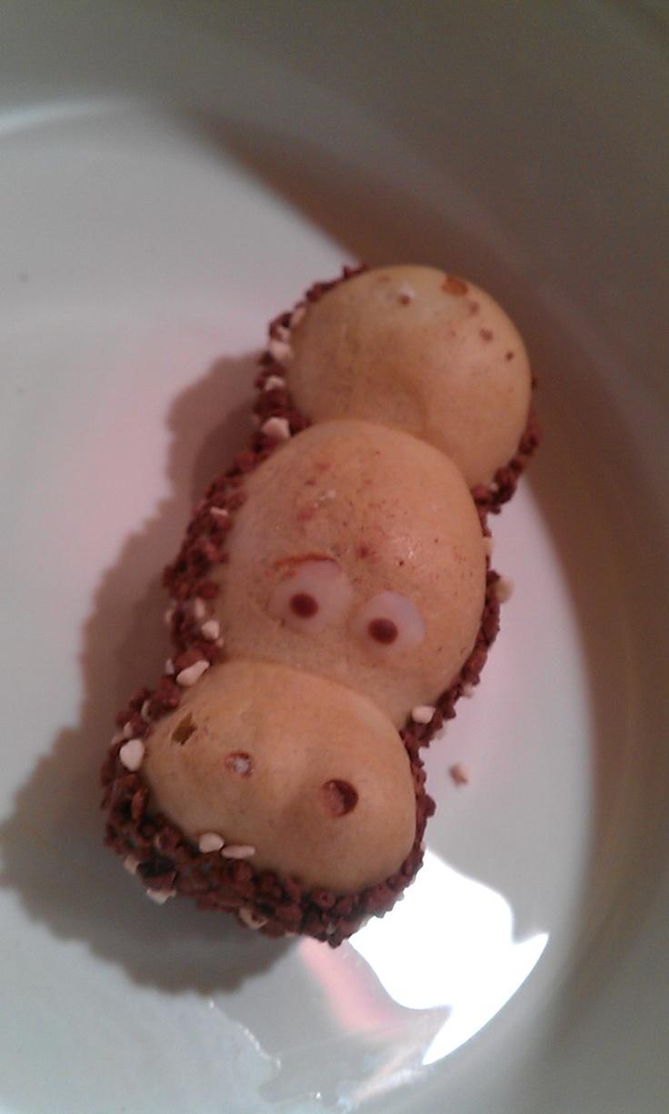 My Favorite Candy Treat Kinder Happy Hippo Hazelnut