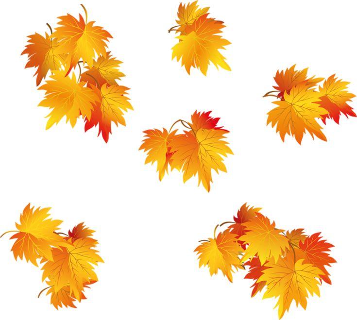 аномалия, картинка для фона осень на прозрачном фоне фотостудий