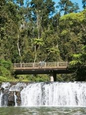 Stop at Malanda Falls on the Malanda Atherton Road to do the short walk to view a wide waterfall close to the road.