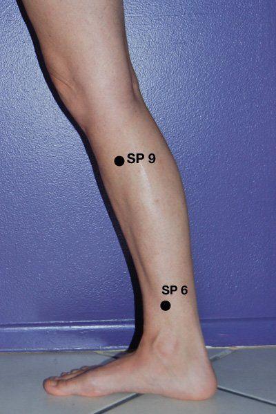 Spleen 9 is on the medial leg, below the knee  Find it by