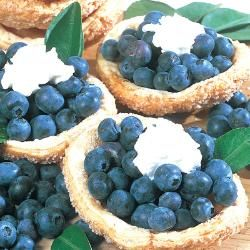 Blueberry Plants For Sale - Blueberry Bushes from Stark Bro's