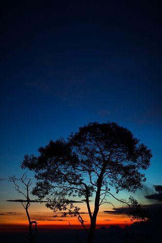 Merbabu Sunset
