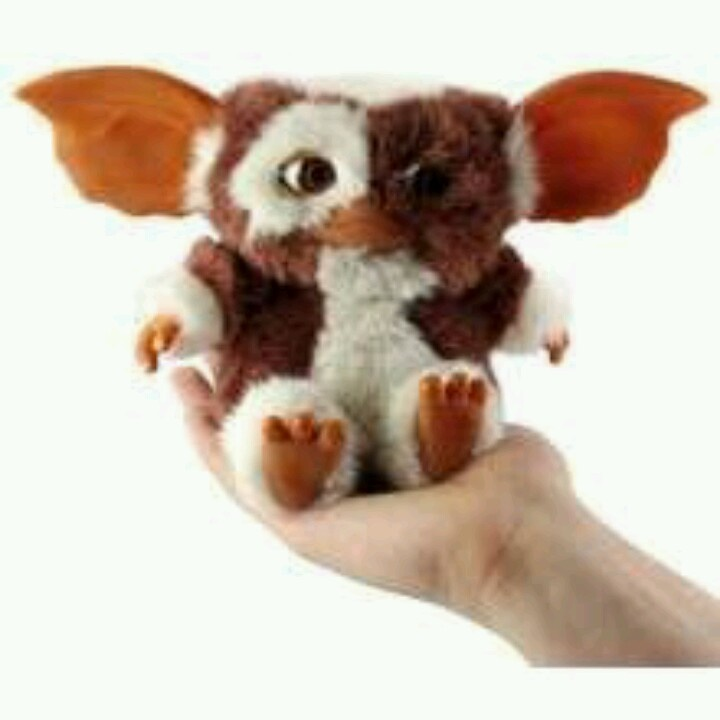 24 Best Images About Gizmo On Pinterest