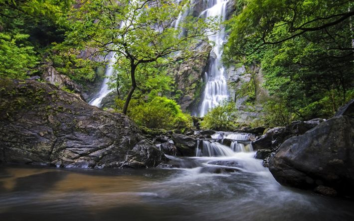 Download wallpapers waterfall, rock, forest, mountain river, stones, water