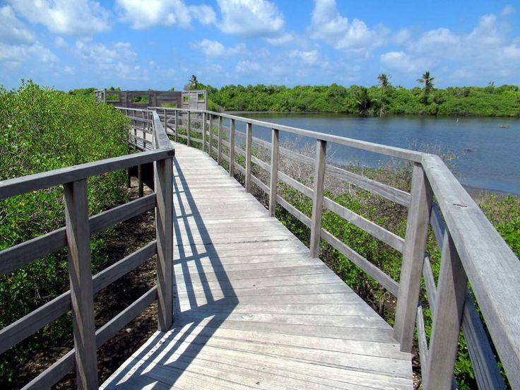 Wildlife viewing blinds are found in the Eydhigali Kilhi and Koattey Natural Protected Area at the north end of Addu Atoll, southernmost of the Maldives.