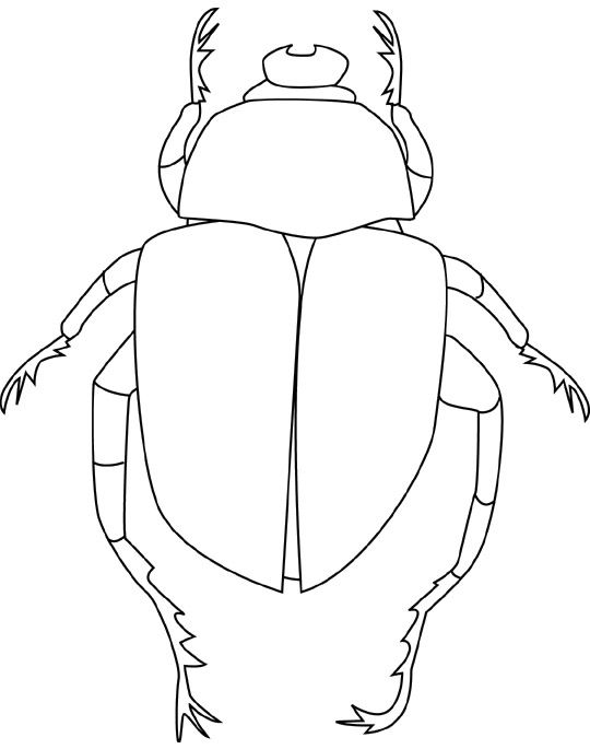 Printable Beetle Coloring Pages