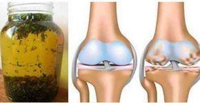 RIGENERARE LA CARTILAGINE DEL GINOCCHIO ED ELIMINARE IL DOLORE PER SEMPRE IN UN SOLO GI Può capitare col tempo di avvertire dolore alle gambe in particolare alle ginocchia dolore intens cartilagine del ginocchio