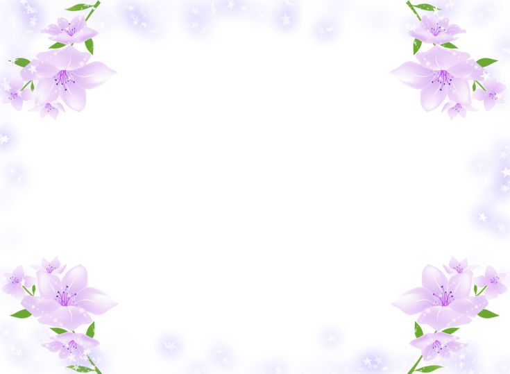 transparent frame with purple soft flowers