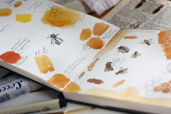 Make a little watercolour sketchbook, take it to the Gardens and fill it with paintings and collected info