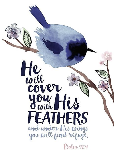 Psalm 91:4 Bible verse - God's protection, love and care.