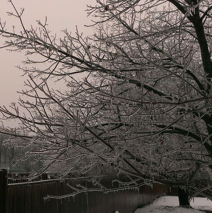Ice Storm - Dec 22, 2013