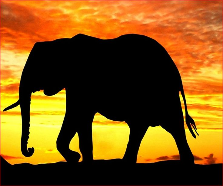 This is the famous story of six blind men and one elephant. Enjoy this 2 minute narration of the poem. http://www.business-online-learning.com/storytelling-and-metaphors-for-business.html