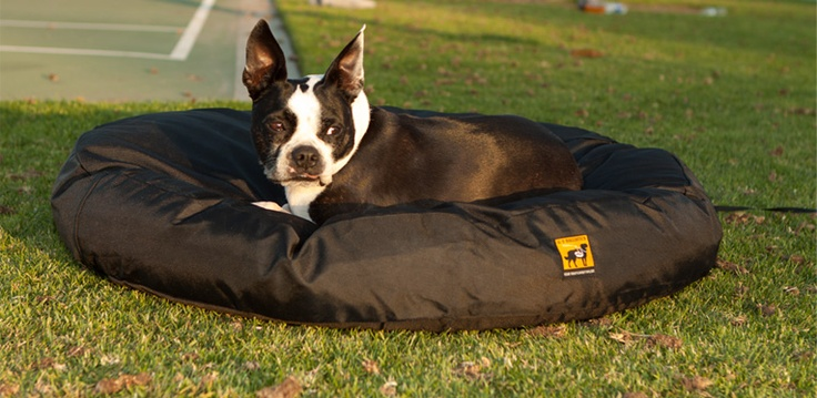 Strongest Chew Proof Dog Beds Indestructable Dog Bed