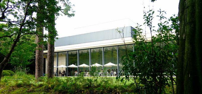 目黒 藤しろ 東京都庭園美術館 じぶん日記 庭園 美術館 日本美術