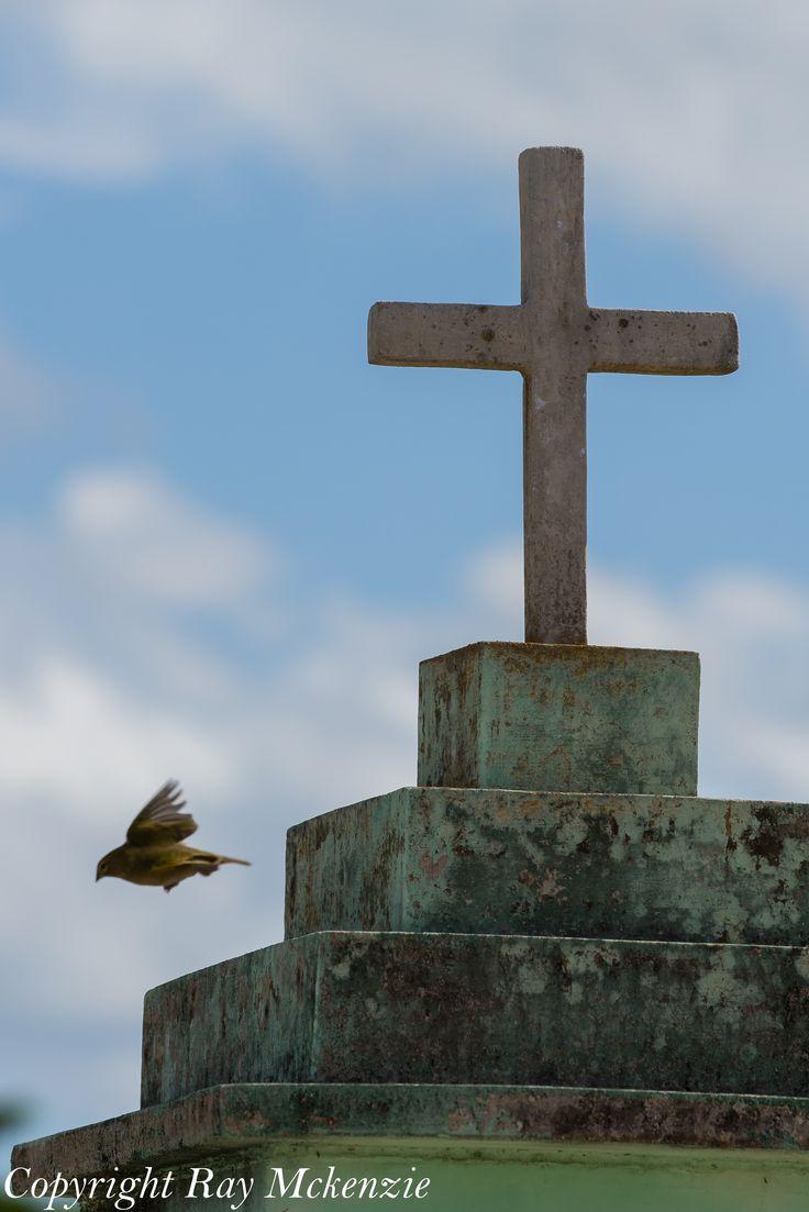 Flight from sin