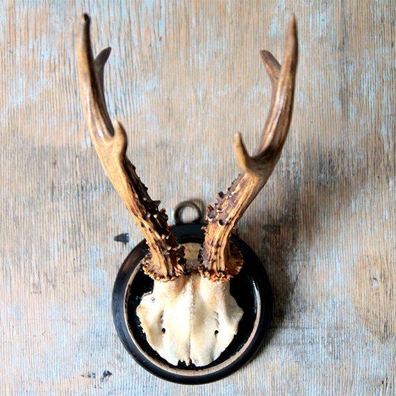 Retro Deer Antlers by ProsteRzeczy on Etsy, zł70.00