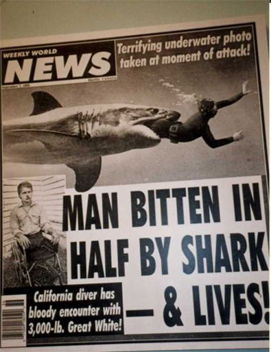 About Shark Attacks Victims stories and photo gallery of victim,bite,Jaws,news