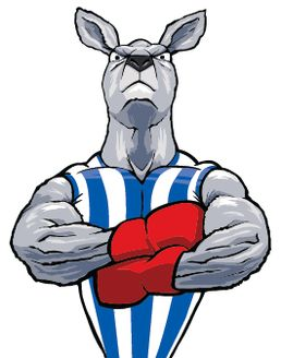 north melbourne football club - Google Search