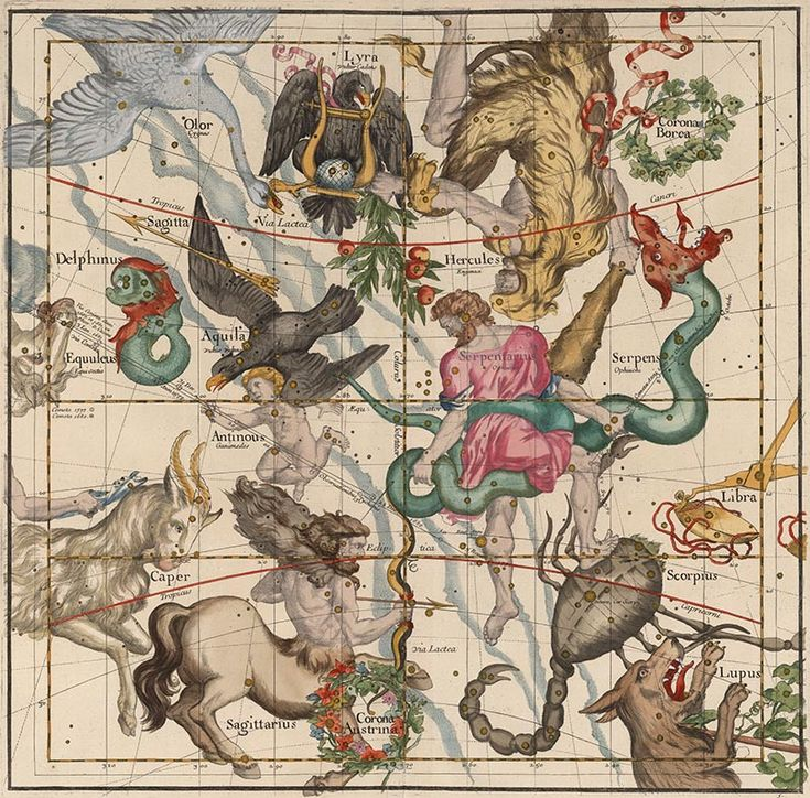 David Rumsey Historical Map Collection | Mapping the Heavens in 1693. Ignace Gaston Pardies, Plate 5: Hercules, Ophiuchus] Scorpius, Sagittarius, Aquila, and Lyra, Paris, 1693